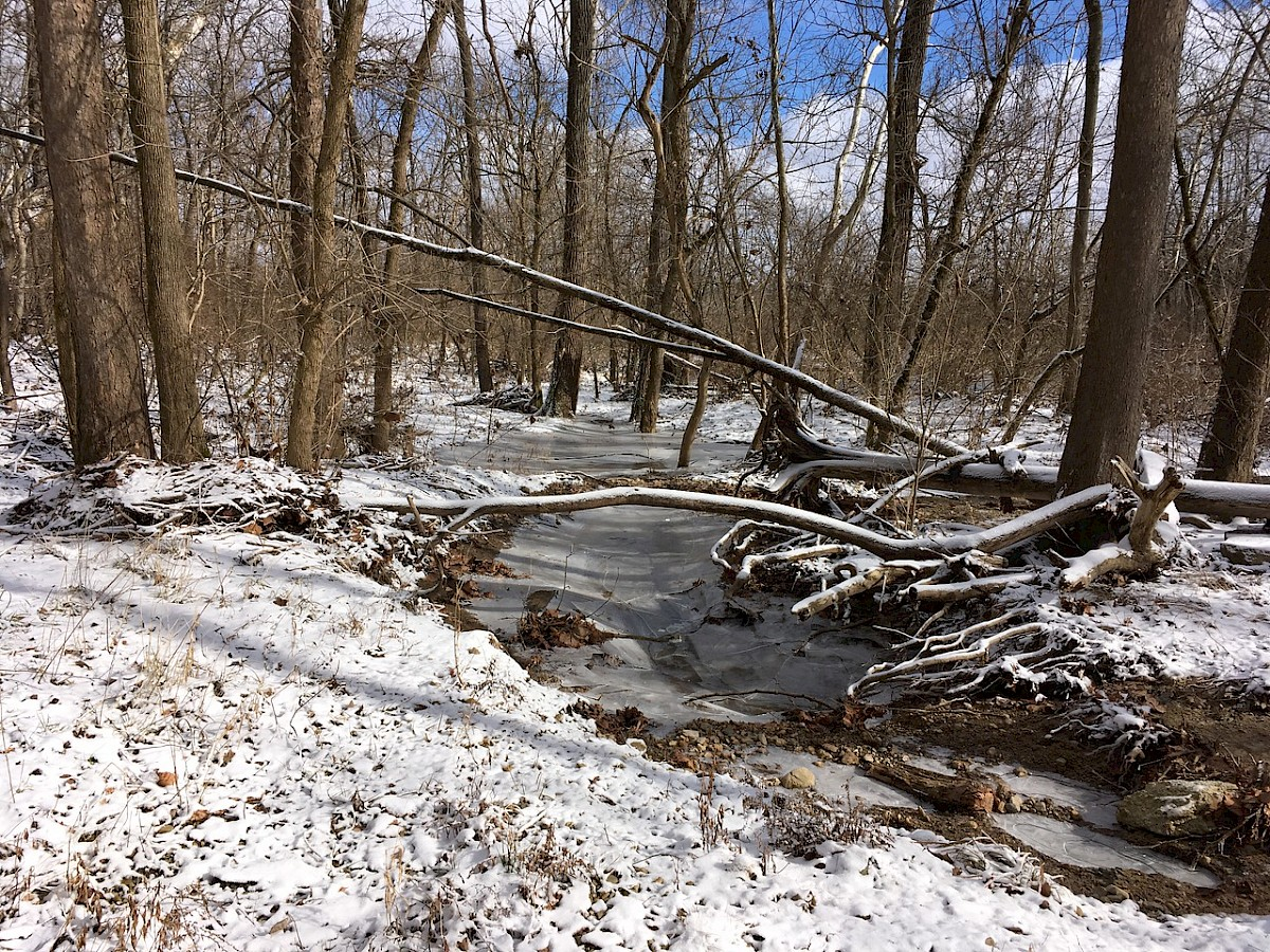 A beautiful frozen creek with snow covering the ground