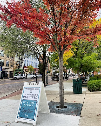 Colorful trees on High Street with a sandwich board on the sidewalk that encourages people to wear face masks due to the congested area.