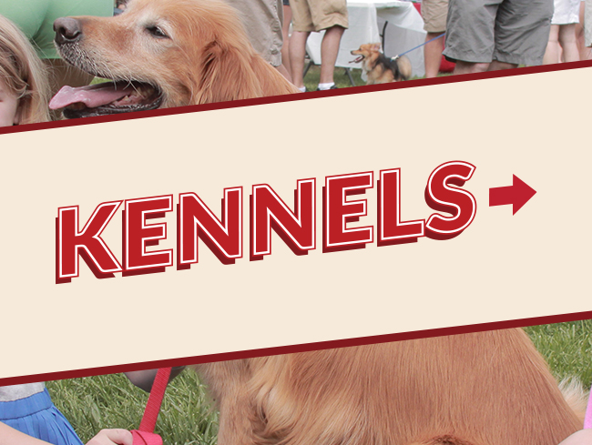 Kennels Text Banner