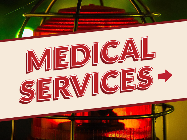 Medical Services Text Banner